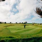 090+Holywell+Bay+Golf+Club-3181198791-O